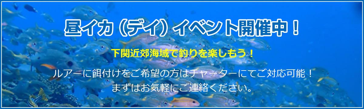 イカ釣りイベント開催中!
