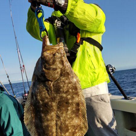 9月25日(土曜日)中潮落とし込み釣り釣果